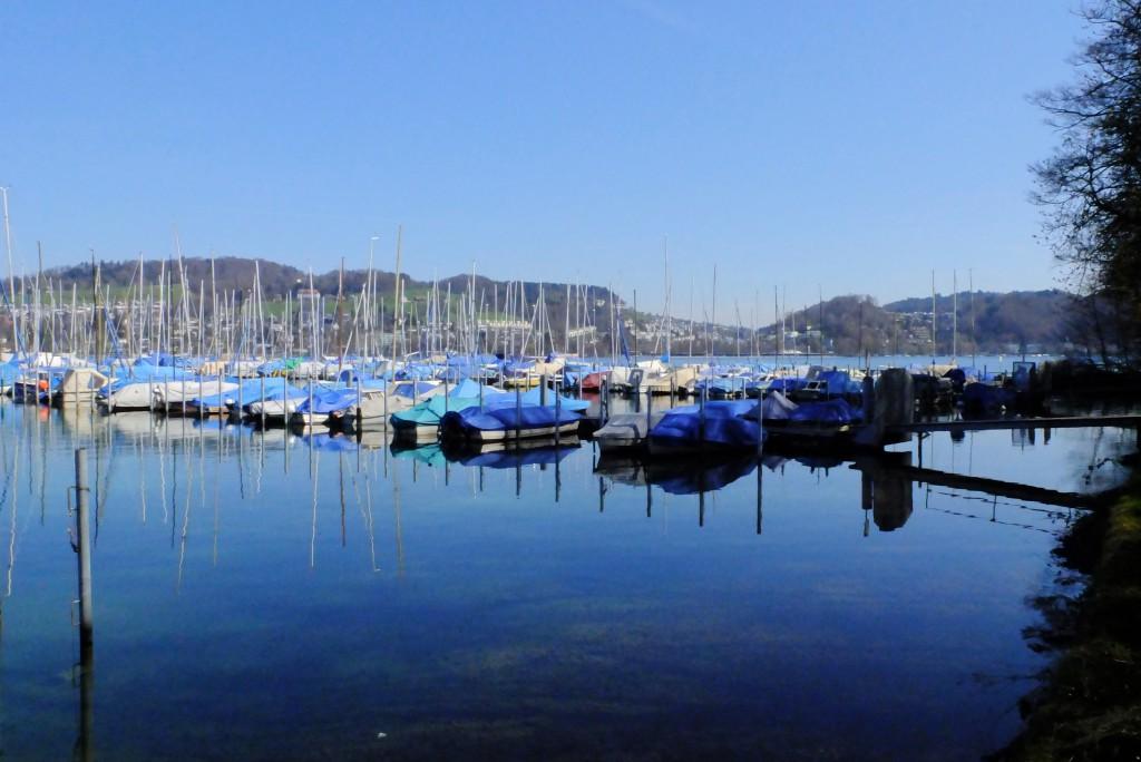 Tribschenhorn Hafen